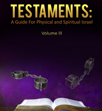 HOLY TESTAMENTS: A GUIDE FOR PHYSICAL AND SPIRITUAL ISRAEL VOL. III